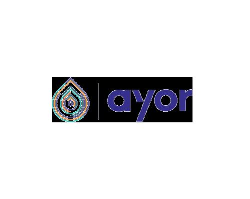 Ayor Client One Thing at a Time Conseil stratégie de marque Julien Delatte